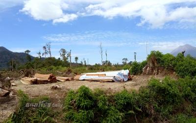Perambahan Hutan Karo-Langkat Harus Dihentikan