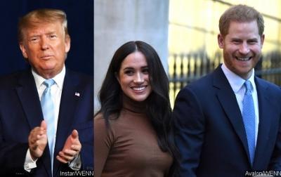 Harry dan Meghan Mundur, Ini Komentar Donald Trump