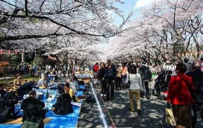 Tempat Wisata Populer di Jepang yang Wajib Ada di List Liburan Anda