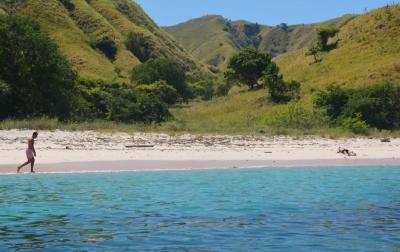 Kunjungan Wisatawan ke Pulau Komodo Meningkat