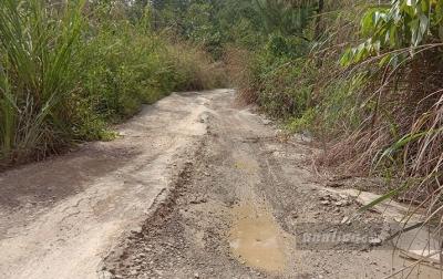 Baru Diperbaiki, Jalan di Rih Tengah Kembali Rusak