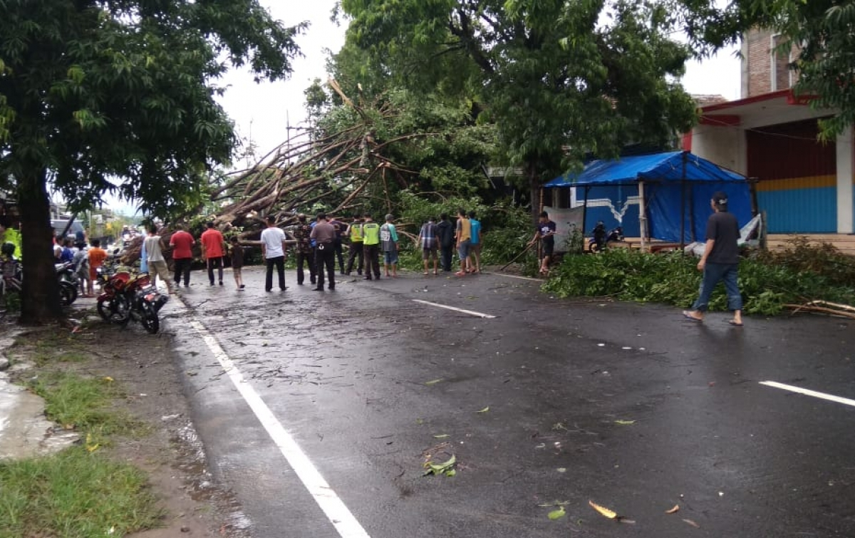 Angin Puting Beliung Terjang Blitar dan Banjir di Wilayah Lain