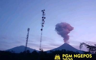 Tinggi Kolom Erupsi Gunung Merapi Capai 2.000 Meter