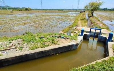 Bendungan Rajui Selesai, Petani Bisa Tanam Tiga Kali Setahun