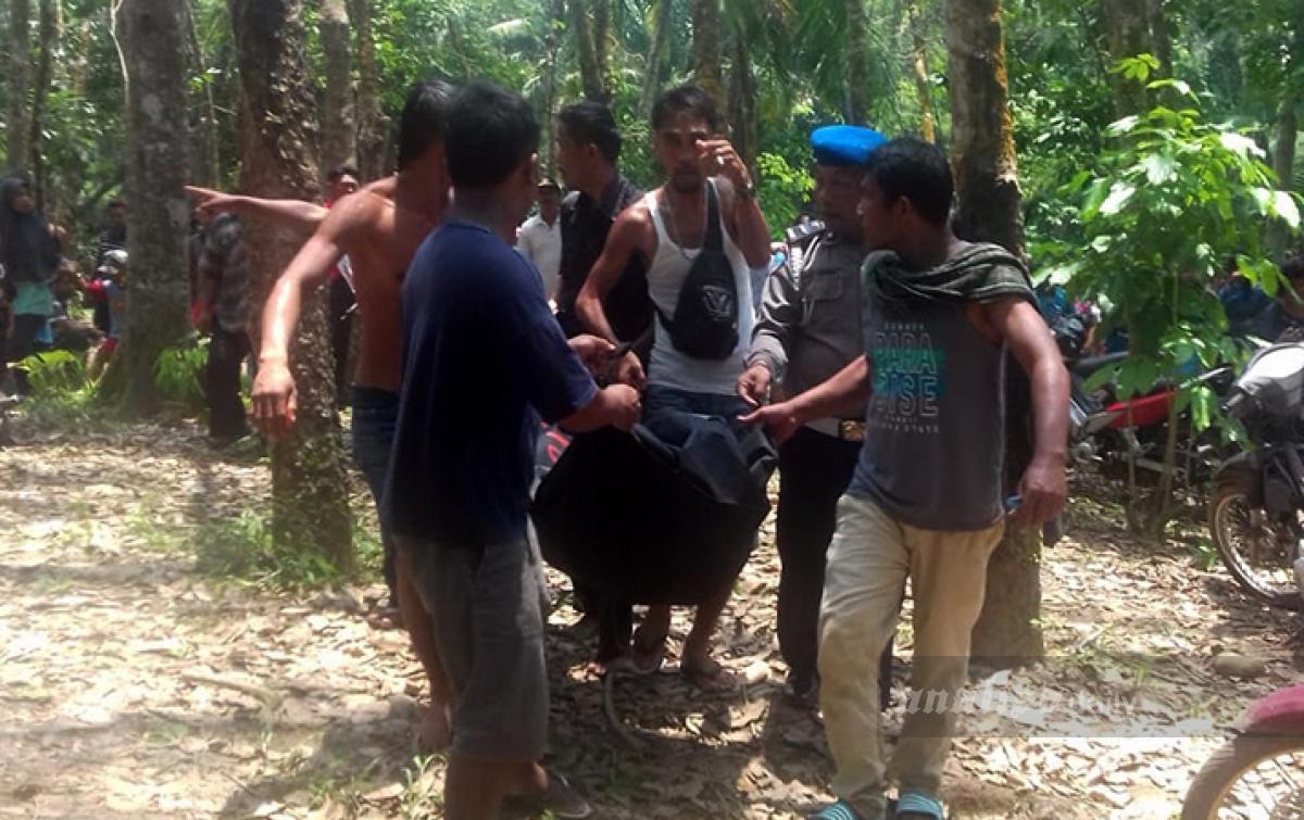Korban Hanyut di Sungai Buaya Ditemukan