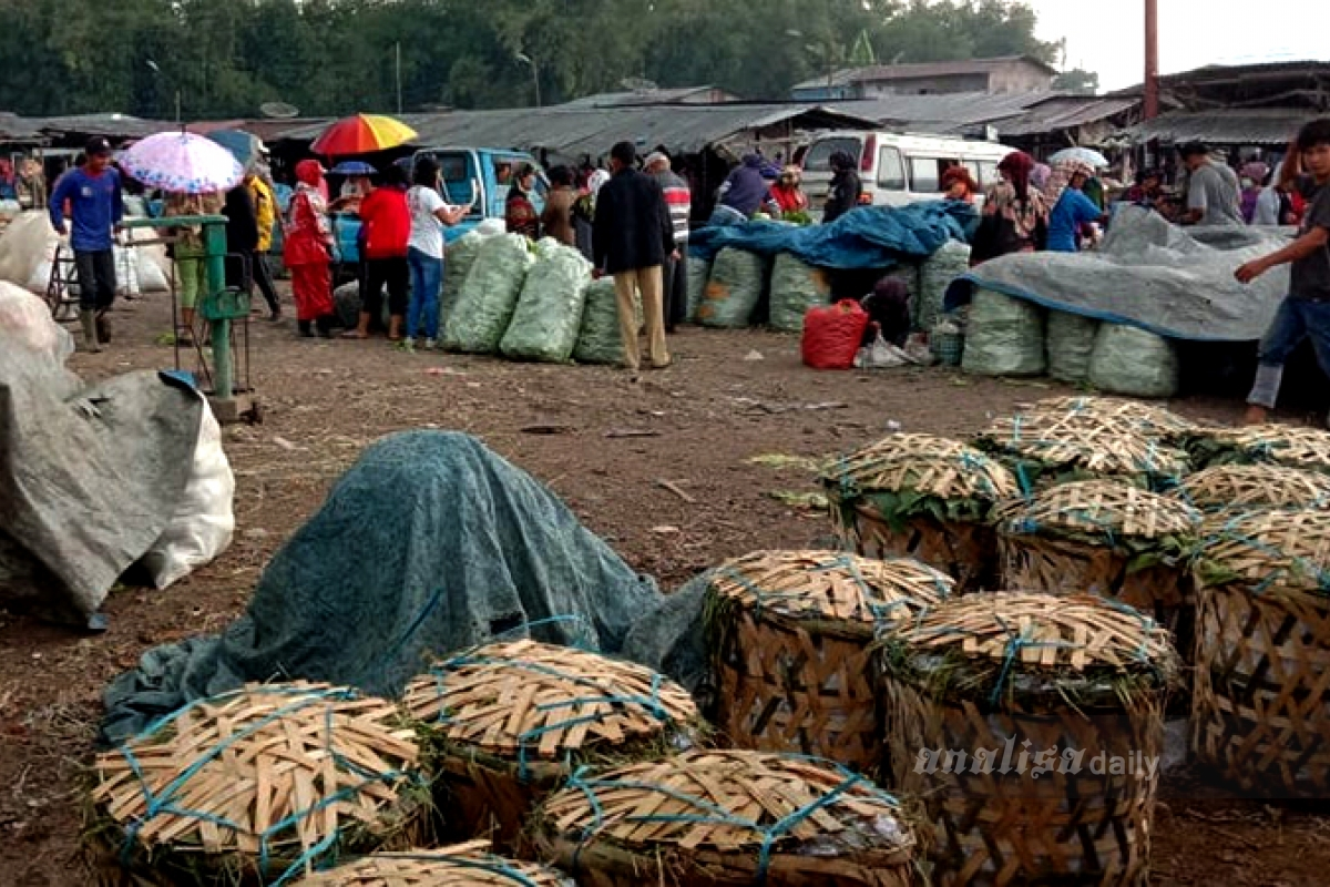 Produk Pertanian di Karo Terancam Busuk
