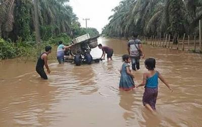Ribuan Hektare Kebun dan Sawah Warga di Simangambat Terendam Banjir