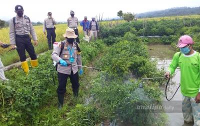 Petani Diharap Tetap Semangat dan Ikuti Protokol Kesehatan