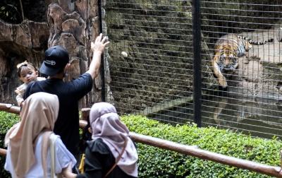 Foto: Kebun Binatang Bandung dibuka Kembali
