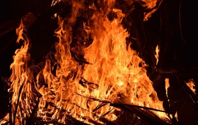 Pabrik Pengolahan Kayu Terbakar