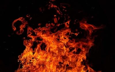 Si Jago Merah Mengamuk, Pabrik di Marelan Hangus Terbakar