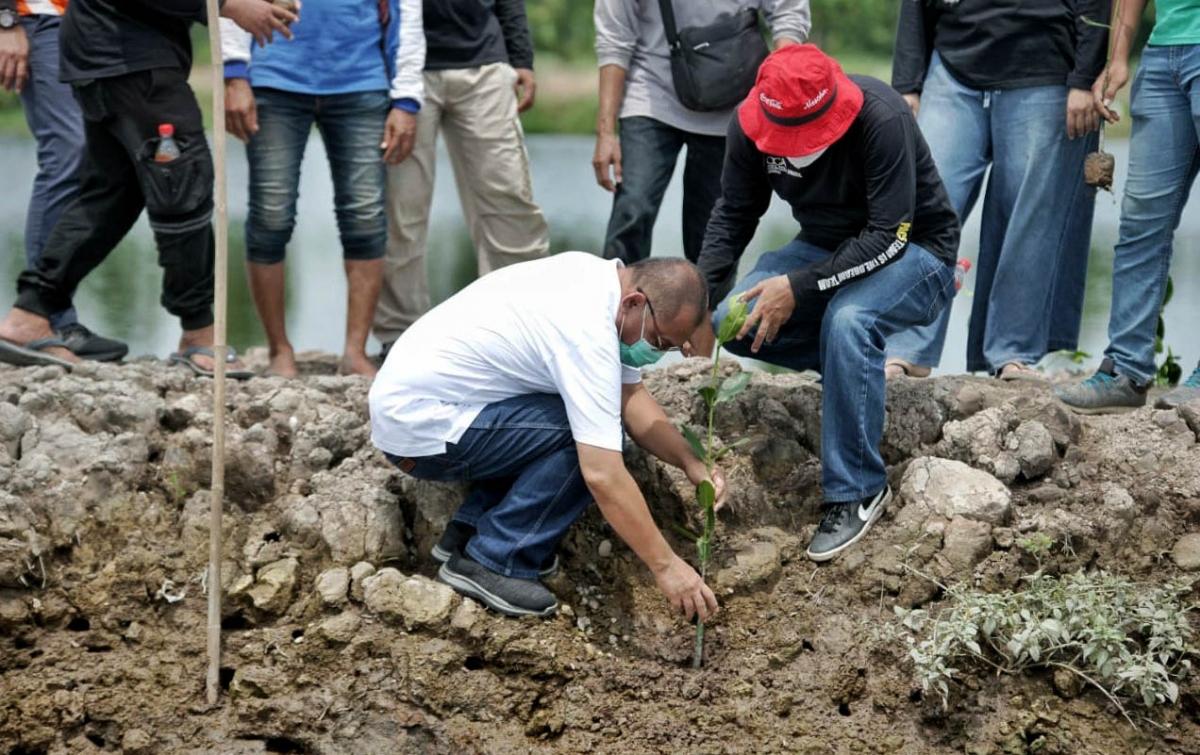 800 Batang Mangrove Ditanam di Kelurahan Sei Mati