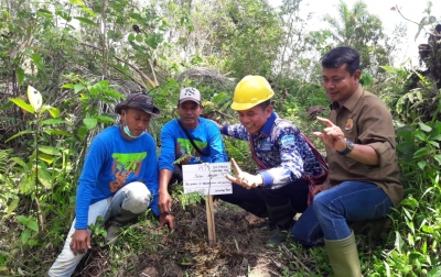 Kawasan Restorasi Harus Jadi Episentrum Oksigen Dunia