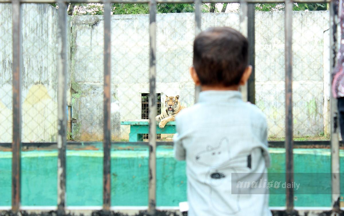 Foto: Berwisata ke Taman Margasatwa