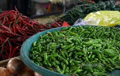 Harga Cabai di Sumatera Utara Dalam Tren Penurunan