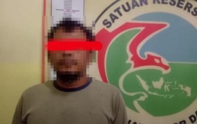 2 Pria di Sidikalang Ditangkap Kasus Dugaan Kepemilikan Ganja
