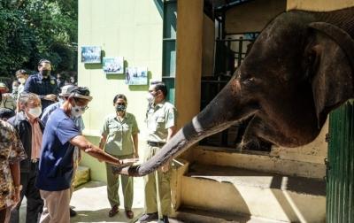 Sandiaga Beri Nama Anak Gajah di Taman Safari