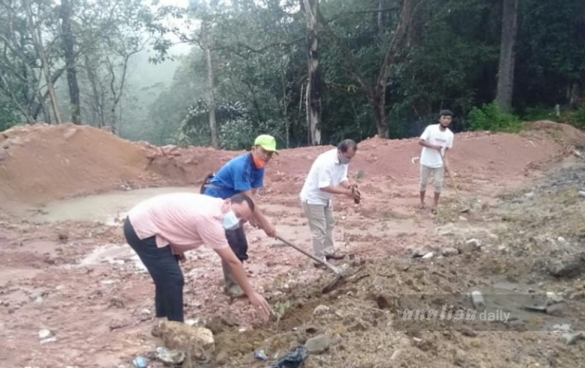 Peduli Danau Toba, GKPI dan Jemaat Bonn Beuel Tanam Pohon di Sibaganding