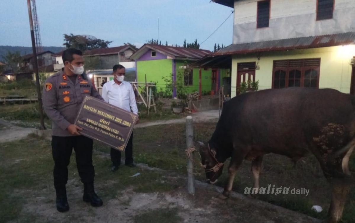 Irjen Panca Sumbang Seekor Hewan Kurban di Tarutung
