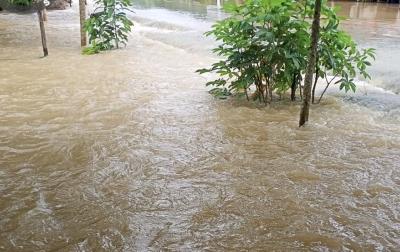 Banjir Rendam 2 Desa di Tabalong, Berangsur Surut
